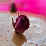 Thinking Pink….Una Torta che profuma di Rosa