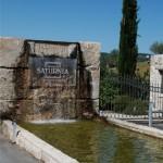 Rigenerarsi in Maremma tra un bagno alle Terme di Saturnia, una visita alla Fattoria Biodinamica La Maliosa  e una cena gourmet all'Acquacotta