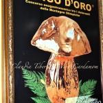 Gran Galà del  Fungo d'Oro 2012, Il Museo del Gusto e l'Agriturismo Turina