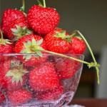 """Strawberries Mood"": Rotolo di Panna e Fragole"